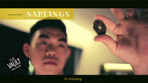 The Vault - Skymember Presents Saplings by Yu Huihang video