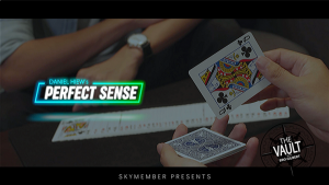 The Vault - Skymember Presents Perfect Sense by Daniel Hiew video