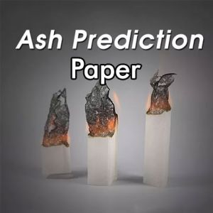 ASH PREDICTION PAPER