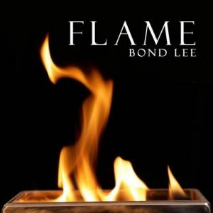 FLAME FIRE BOX