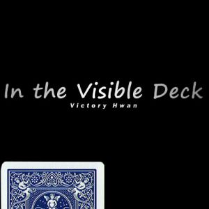 IN THE VISIBLE - BLEU - VICTORY HWAN