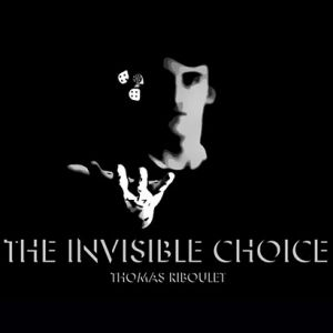 LIVRE : INVISIBLE CHOICE - THOMAS RIBOULET