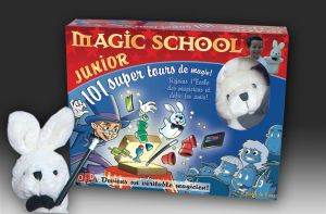 magie, coffret magic school