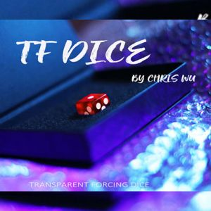 TF DICE - ROUGE