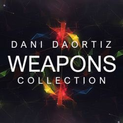 DANI'S COLLECTION OF WEAPONS