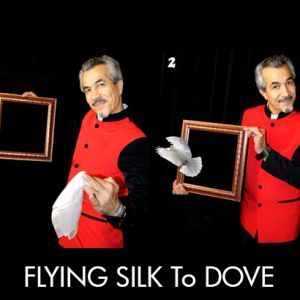 FLYING SILK & CHANGING TO DOVE FRAME