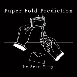 PAPER FOLD PREDICTION - SEAN YANG