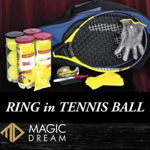 RING IN TENNIS BALL - Joel Ward