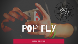 The Vault - Pop Fly by Bizau Cristian video