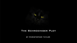 The Schrodinger Ploy by Christopher Taylor video